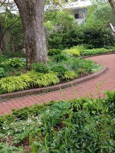Spring green in the Ripley Garden 2016.