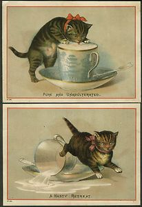 The top card is a re-working or copy of a Helena Maguire image, but definitely not by Maguire. Little Kittens, Cats And Kittens, Vintage Postcards, Vintage Images, Kitten Images, Dog Illustration, Winter Cards, Vintage Cat, Cat Drawing