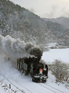 Steam locomotive in Hokkaido, Japan 函館-大沼公園. Steam Locomotive. Паровоз на Хоккайдо.