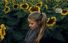 sunflower photo shoot - Michelle Renee Photography