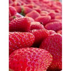 Are you looking for a thrifty strawberry recipe? I'll tell you how to save money on strawberries, handle them, and get you started with a list of easy and thrifty strawberry recipes. Strawberry Summer, Strawberry Sauce, Strawberry Recipes, Nutrition, Easter Brunch, Natural Living, Tasty Dishes, Sauce Recipes, Health And Wellness