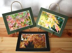 Autumn Leaves Art Set photography leaf fall 5x7 by WizardAtWork, $25.00