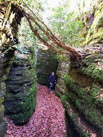 Una ruta en la que vamos a entrar en una zona de bosque sombrío y verde y donde vamos a ir descubriendo un lugar curioso, con unas especta... European Travel, Trekking, The Good Place, Spain, Places To Visit, Around The Worlds, Hiking, Explore, Photography