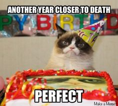 But birthdays are the worst.   Community Post: Infertility Explained By 33 Impossibly Adorable Cats