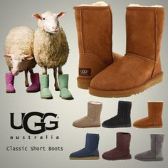 YES!!YES!!Best place to get uggs for cheap like 66% off!!