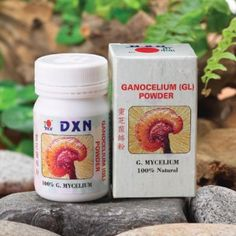 GL (Ganocelium powder) http://www.dxnengland.com/products/ganoderma-food-supplements/