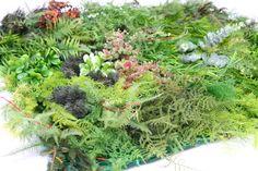 Plantas Artificiales : Placa de Jardín Vertical Artificial