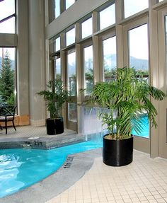 Plant Design Around Pool By JOanne Craft At Westin Whistler Resort Hotel