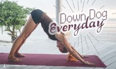 GOOD WEBSITE- VIDEOS. ETC- 5 Reasons To Practice Downward Dog Every Day