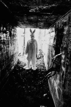 Bunny Man.... Run bitch.....