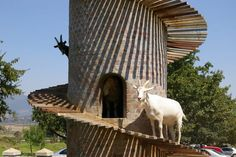 Discover The Goat Tower of Fairview Cheese & Wine Farm in Paarl, South Africa: The original goat tower, the one that started it all. Farm Animals, Cute Animals, Goat Shed, Goat House, Modern Farmer, Tower Garden, Farm Gardens, Livestock, Farm Life