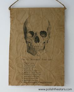Hey, I found this really awesome Etsy listing at https://www.etsy.com/listing/108670908/mad-scientist-canvas-skull-print