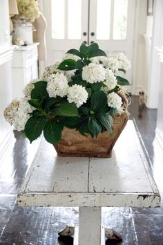 Decorating with White Hydrangeas