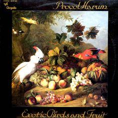 Classic Rock Album Cover Art | CLASSIC ALBUM COVERS - EXOTIC BIRDS AND FRUIT