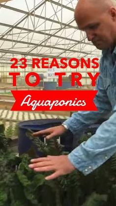 by Jodie Perry Aquaponics is a food growing system that combines a hydroponic vegetable garden with a fish tank, using the two to support one another. There are a lot of great reasons for gardeners…