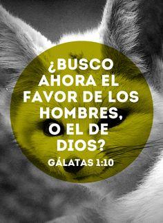 ¿Busco ahora el favor de los hombres, o el de Dios? - Galatas 1:10 #bible #readandlive