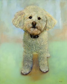 Chester, a very cute poodley dog from Chappaqua, 16 x 20, oil on panel