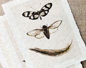 neutral hand torn parchment prints