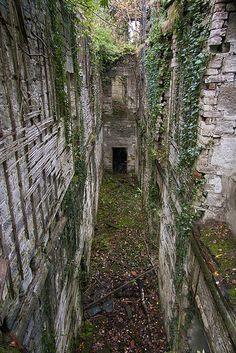 Abandoned Buchanan Castle is a ruined country house in Stirlingshire, Scotland located 1 mile west of the village of Drymen. The present house was built in 1854 and the roof was removed in 1954, but it remains the seat of the Clan Graham.  The walls of the house remain intact and are considered to be in good condition.  Photo: found on abandonedscotland.com