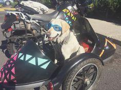 Rufio | A DIY KLR650 Sidecar Build | Mallory Paige