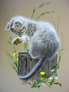 Ideas cats painting pastel for 2019 Cute Cats And Kittens, Cool Cats, Animal Paintings, Animal Drawings, Gouache, Pastel Art, Cat Drawing, Wildlife Art, Beautiful Cats
