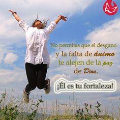 Dios es tu fortaleza.  #Confía #Fe #Esperanza #Dios #Animo #paz #Católico #MensajedelDía #quote