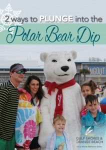 Two Ways to Plunge into the Polar Bear Dip  #GulfShores  #OrangeBeach