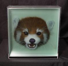Taxonomy III: Paintings of Animals on Layers of Glass by Yosman Botero
