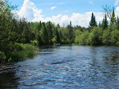 River canoeing in Northwest Wisconsin.