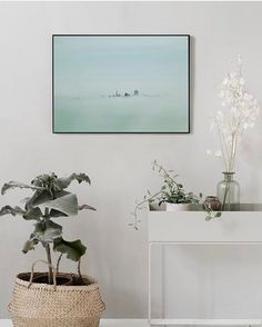 ferm LIVING Plant Bo