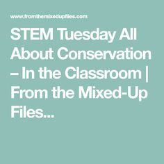 STEM Tuesday All About Conservation – In the Classroom | From the Mixed-Up Files...