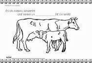 Resultado de imagen de proyecto la vaca infantil