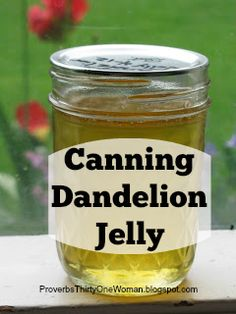 Living the Proverbs 31 Woman life: Homekeeping, homesteading, parenting, marriage, and God Jelly Recipes, Jam Recipes, Canning Recipes, Sweet Recipes, Dandelion Jelly, Dandelion Flower, Dandelion Recipes, Homemade Jelly, Homemade Food