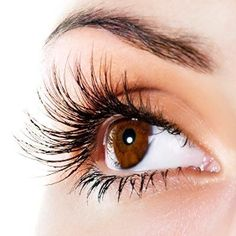 How I Learned to Love Applying Lash Extensions - One Two Lash