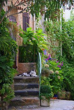 Street Scene, Grimaud, Provence, France