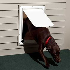 Magnador Kennel Dog Door Large Mag 2  13 x 1975 flap heavy duty magnet white >>> You can find more details by visiting the image link. This is an Amazon Affiliate links.