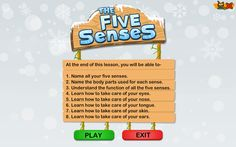 The Five Senses is a fun science game that teaches preschoolers about touch, smell, hearing, sight, and taste. Learn how you use your senses on Turtle Diary! 1st Grade Activities, Kindergarten Science, Elementary Science, Science Education, Teaching Science, Fun Science Games, Preschool Games, Weird Science, Science Ideas