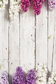 This is where you can add new products to your store. Iphone Background Vintage, Flower Background Wallpaper, Flower Phone Wallpaper, Cute Wallpaper For Phone, Wood Wallpaper, Shabby Chic Background, Iphone Lockscreen Wallpaper, Wallpaper Backgrounds, Wallpapers