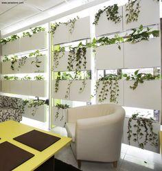 Cortina Vegetal de Serastone. Una forma creativa de separar ambientes. Decoración Avanzada. Para más info: http://www.serastone.com
