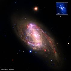The spiral galaxy NGC 3627 is located about 30 million light years from Earth. This composite image includes X-ray data from NASA's Chandra X-ray Observatory (blue), infrared data from the Spitzer Space Telescope (red), and optical data from the Hubble Space Telescope and the Very Large Telescope (yellow). The inset shows the central region, which contains a bright X-ray source that is likely powered by material falling onto a supermassive black hole.