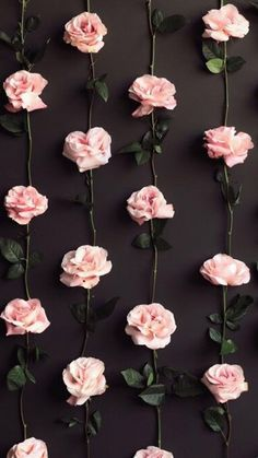 Excuse My French rose vine diy idea in home decor. You could attach these to make them like the ones sold in art stores. Pink roses on black background. Cute Backgrounds, Cute Wallpapers, Wallpaper Backgrounds, Backgrounds Tumblr Pastel, Hipster Wallpaper, Iphone Wallpapers, Flower Wallpaper, Screen Wallpaper, Pastel Pink Wallpaper