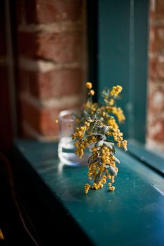 These lovely little flowers. | 33 Reasons Mustard Yellow Is The Very Best Color