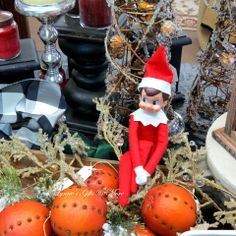 This precocious elf is at it again, he loves surrounding himself with Christmas finery. Surrounded by the smell of oranges decorated with cinnamon scented cloves is not a bad way to spend an afternoon.