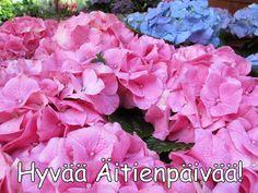 Oikein ihanaa Äitienpäivää!  🌹   🌷   💐         Huolta vailla päivä tämä vietä, äiti kulta,   Onnittelut kauneimmat ja ruusut saat sä multa.