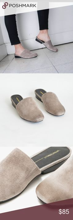 Intentionally Blank Touch Mules Grey Excellent condition Suede mules neutral grey. The only flaw is the footbed lining under the right foot toe is coming up as you sometimes have to grip toes when you wear mules, we all know that right!? ;) the siege needs to be brushed and as pictured there are marks on heel which can easily be cleaned off  these are a great everyday slide on Intentionally Blank Shoes Mules & Clogs