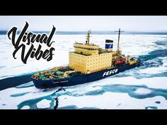 ARCTIC - Visual Vibes - YouTube