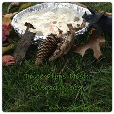 My dinosaur loving preschoolers had a great time with this science experiment. He loved the real hatching eggs in this dinosaur nest pretend play!