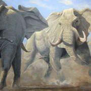 Jason O'Ceannobhain Meadow Pipit, Ireland, Irish, Wildlife, Elephant, African, Artists, Portrait, Canvas