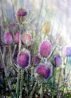 Teasel-5 Watercolor by Rukiye Garip  56 x76 cm Arches 300 gr Rough https://www.facebook.com/rukiyegaripresimatolyesi