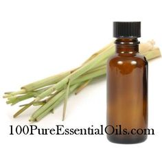 Lemongrass Oil is a commonly used essential oil in aromatherapy as a cellulite remedy (depurative), as a fly, flea and tick repellant (insect repellent), and as a treatment for oily skin and hair (astringent). The essential oil that comes from the grass of Cymbopogon citratus is antiseptic, and antibacterial. When inhaled, Lemongrass oil can act as a sedative to the nervous system and helps to relieve nervous disorders. The scent is very strong and a little oil goes a long way. Pure…